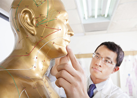 Doctor pointing out meridian diagram on a mannequin.